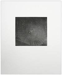 untitled (web 2) by vija celmins