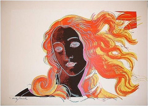 venus 318 by andy warhol