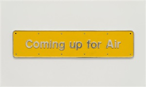 coming up for air by darren almond