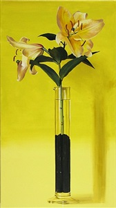 yellow lily graduate by ben schonzeit