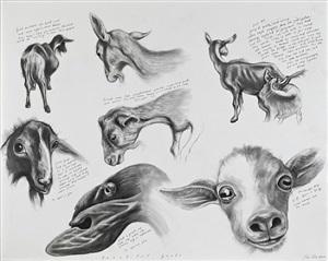 beautiful goats by sue coe