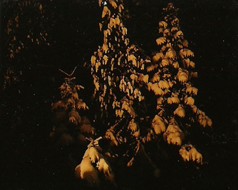parallel landscapes, a night in the snow by astrid kruse jensen