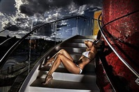 the perfect storm by david drebin