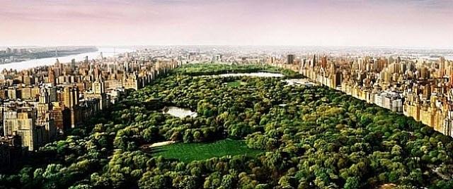 dreams of central park by david drebin