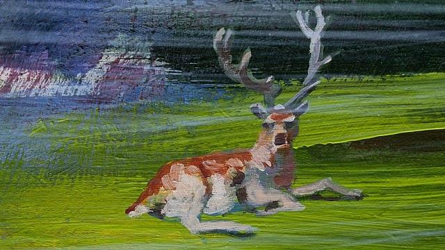 deer by jacco olivier