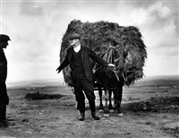 irish farmer carting hay by dorothea lange