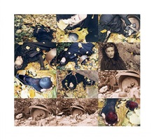 fall by kiki smith