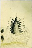 torre de babel by sandra vásquez de la horra