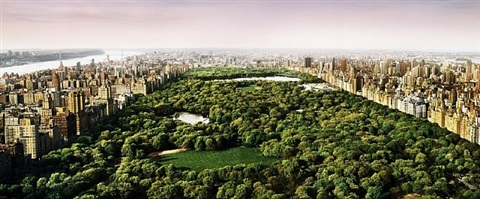 dreams of central park by david drebin