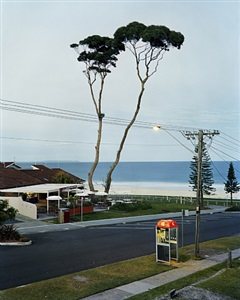 two tall trees, mollymook, new south wales, australia by amy stein and stacy arezou mehrfar