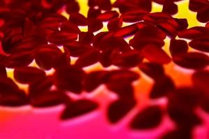 gummy lips by alex geana
