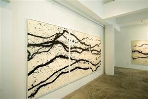 installation view - fabienne verdier 1 by fabienne verdier