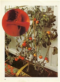 the tomato lovers by wade guyton