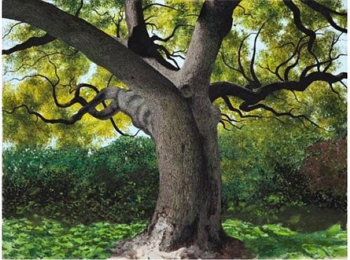 river crest oak by james blake