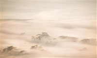 crater fog by paul hagedorn