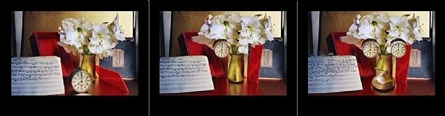 archimboldo's music by duane michals