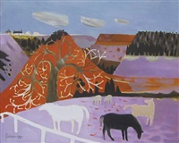 yorkshire ponies by mary fedden