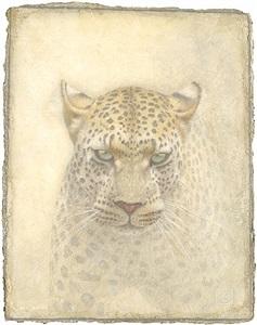 wild life by victor koulbak