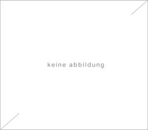 """mappe """"köpfe"""" / portfolio """"heads"""" by alexej jawlensky"""