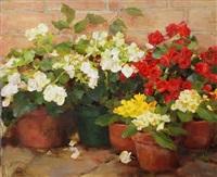 primrose & begonias (sold) by kathy anderson