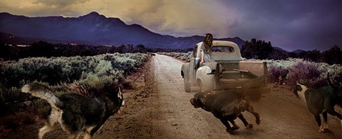 dirt road dogs by tom chambers