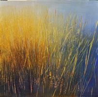 solar seagrass by david allen dunlop