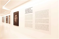 installation view dirimart 2013 by shirin neshat