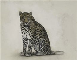 leopardo by david morago