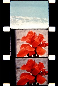 cassis, france, 1966 by jonas mekas