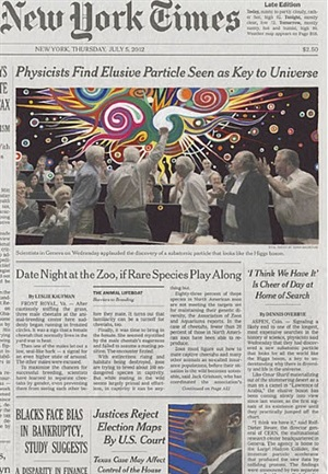 july 5, 2012 by fred tomaselli