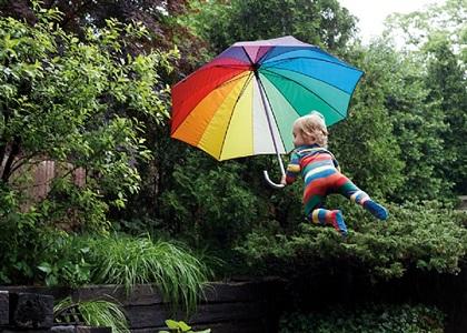rainy day flight by rachel hulin