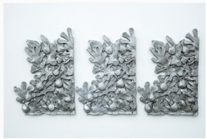 botanique pudique (3) by nicolas deshayes