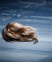 telltale (hair) by stephanie washburn