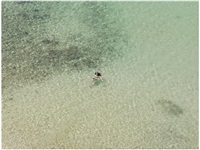 untitled (february 13, 2012 12:20pm) by richard misrach