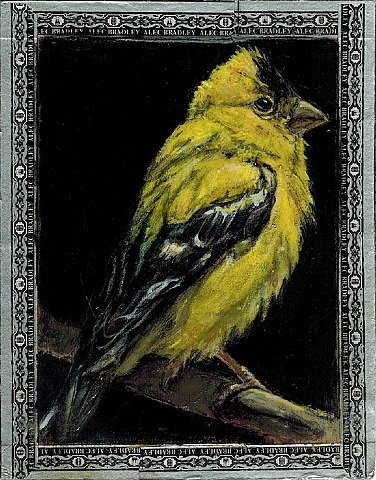 goldfinch / torpedo by ed musante