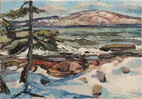 view of cadillac mountain from schoodic point by michael vermette