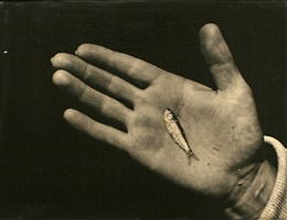 martha's vineyard (hand with minnow) by aaron siskind