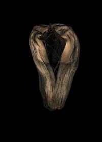 untitled (cocoon) by jitka hanzlová