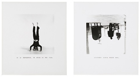 eureka william wegman photographs 1970-1975 by william wegman