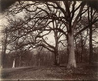 st. cloud, 1013 by eugène atget