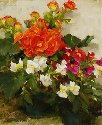 orange begonias and snapdragons by kathy anderson