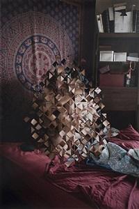 puzzle pieces by sarah anne johnson