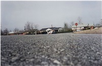untitled (ground view of street) by william eggleston