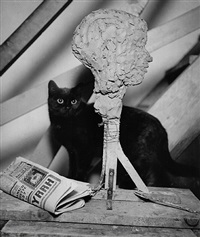 the studio cat, paris by andré kertész