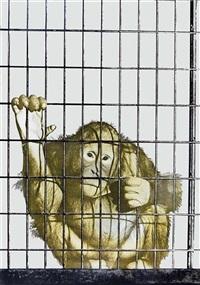 scimmia in gabbia (color variation) by michelangelo pistoletto