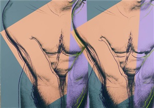 double torso by andy warhol