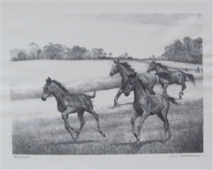 early speed by clarence william anderson