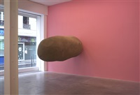 home by erwin wurm