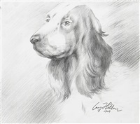 cocker spaniel 1929-2012 by yang jiechang