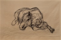 untitled (horse lying down) by nicola hicks